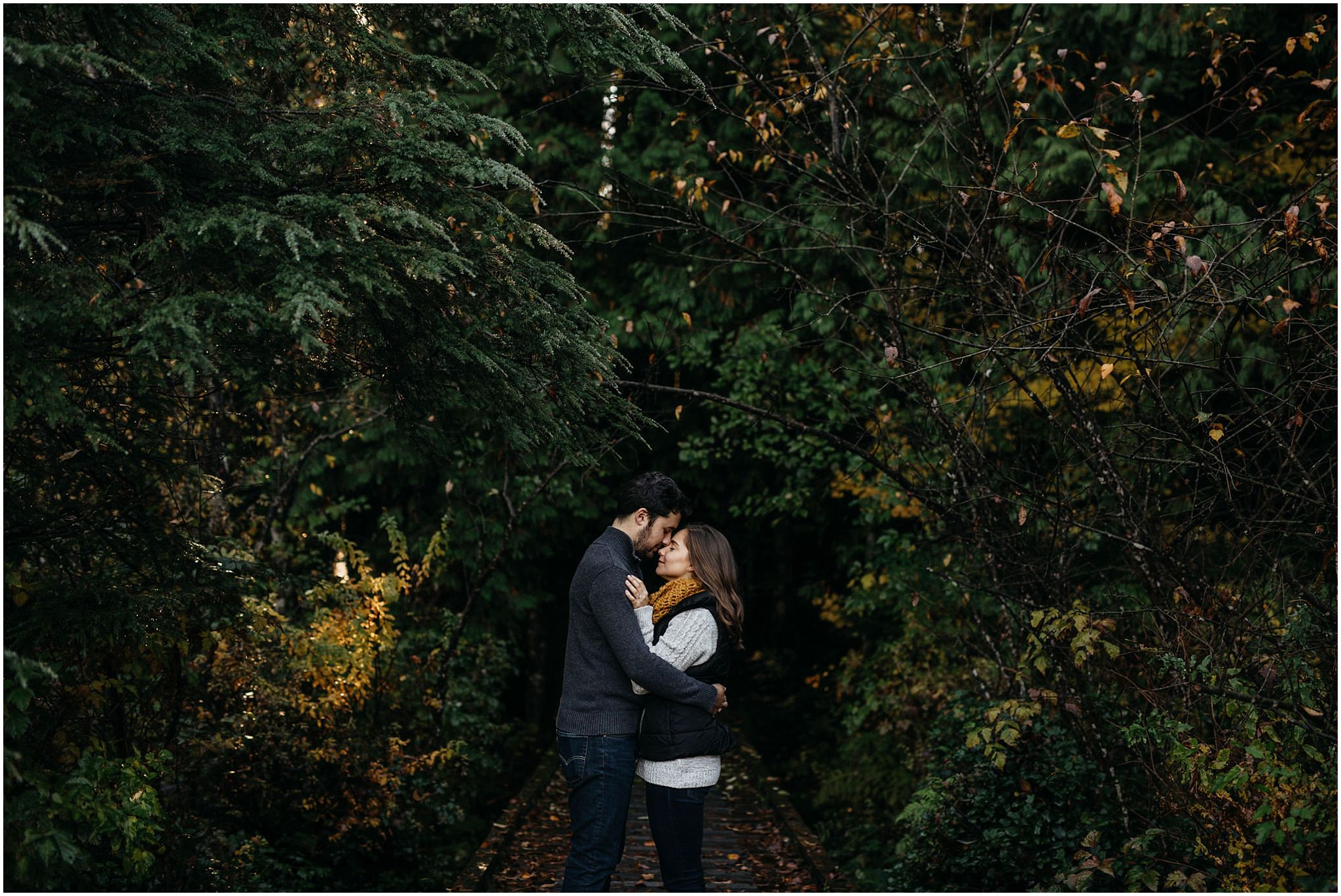 couple in trees forest rolley lake engagement session