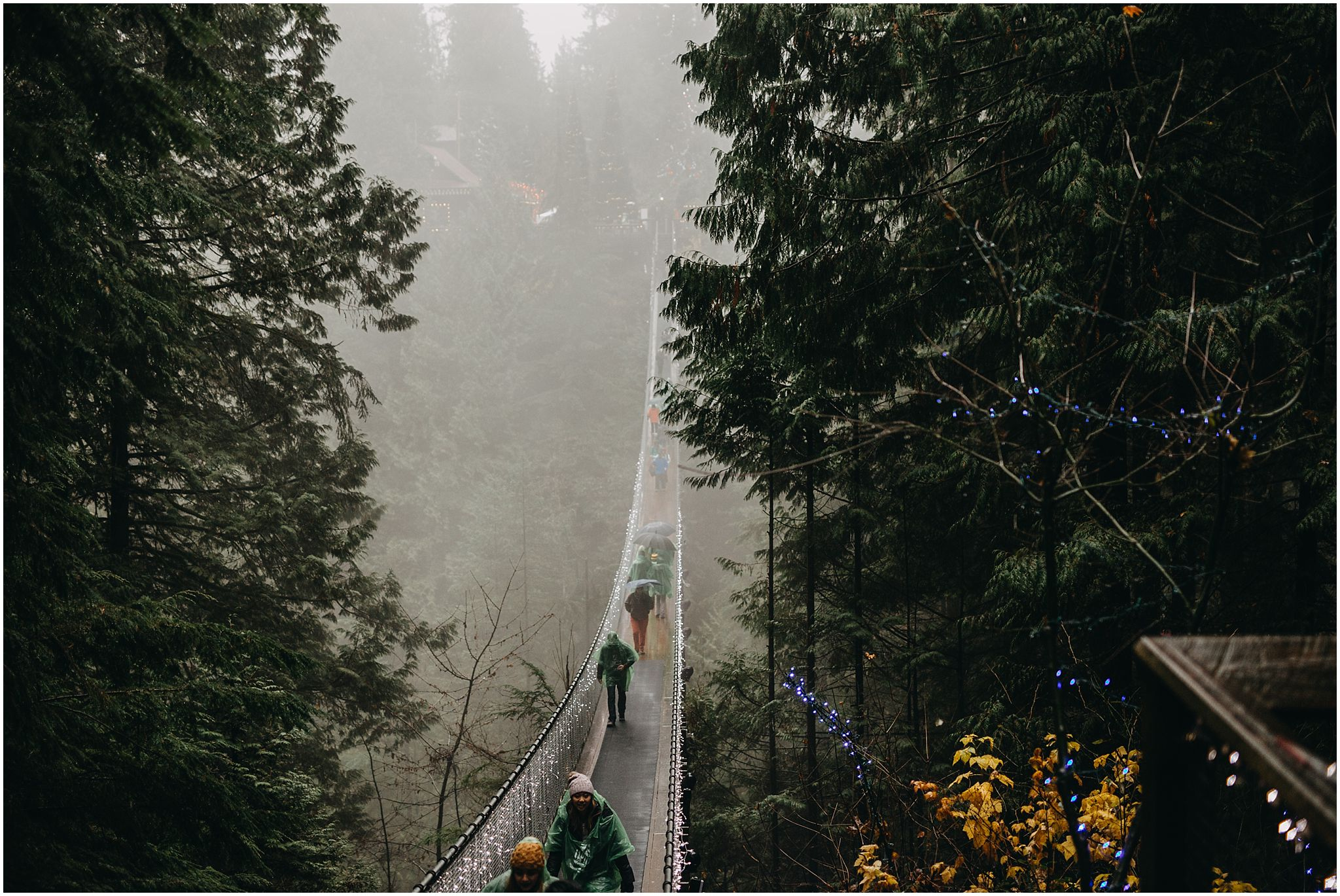 capilano suspension bridge foggy rainy day
