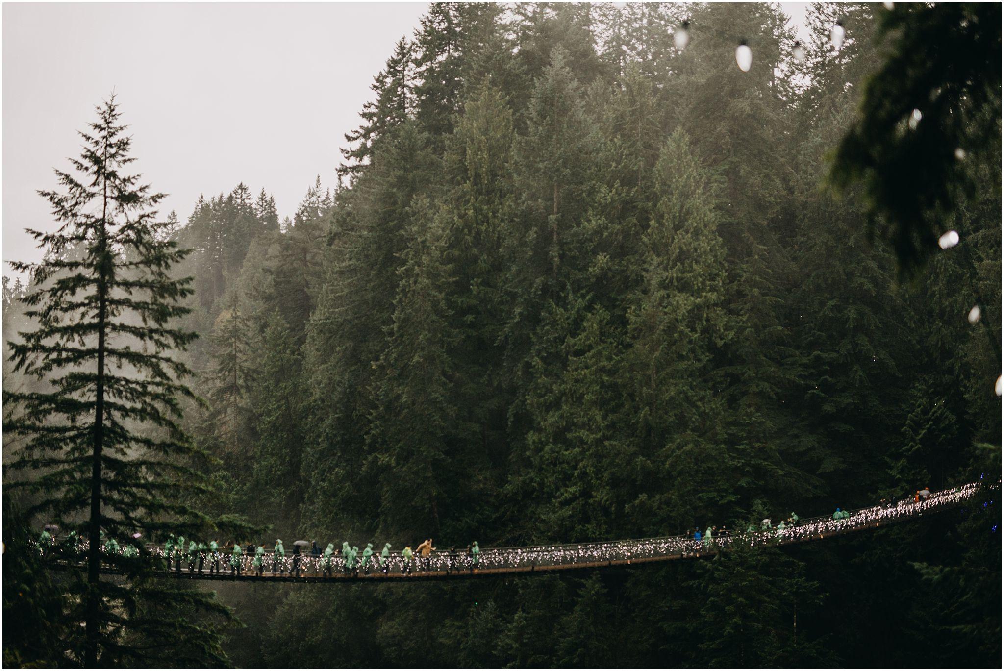 capilano suspension bridge forest trees north vancouver rainy pnw