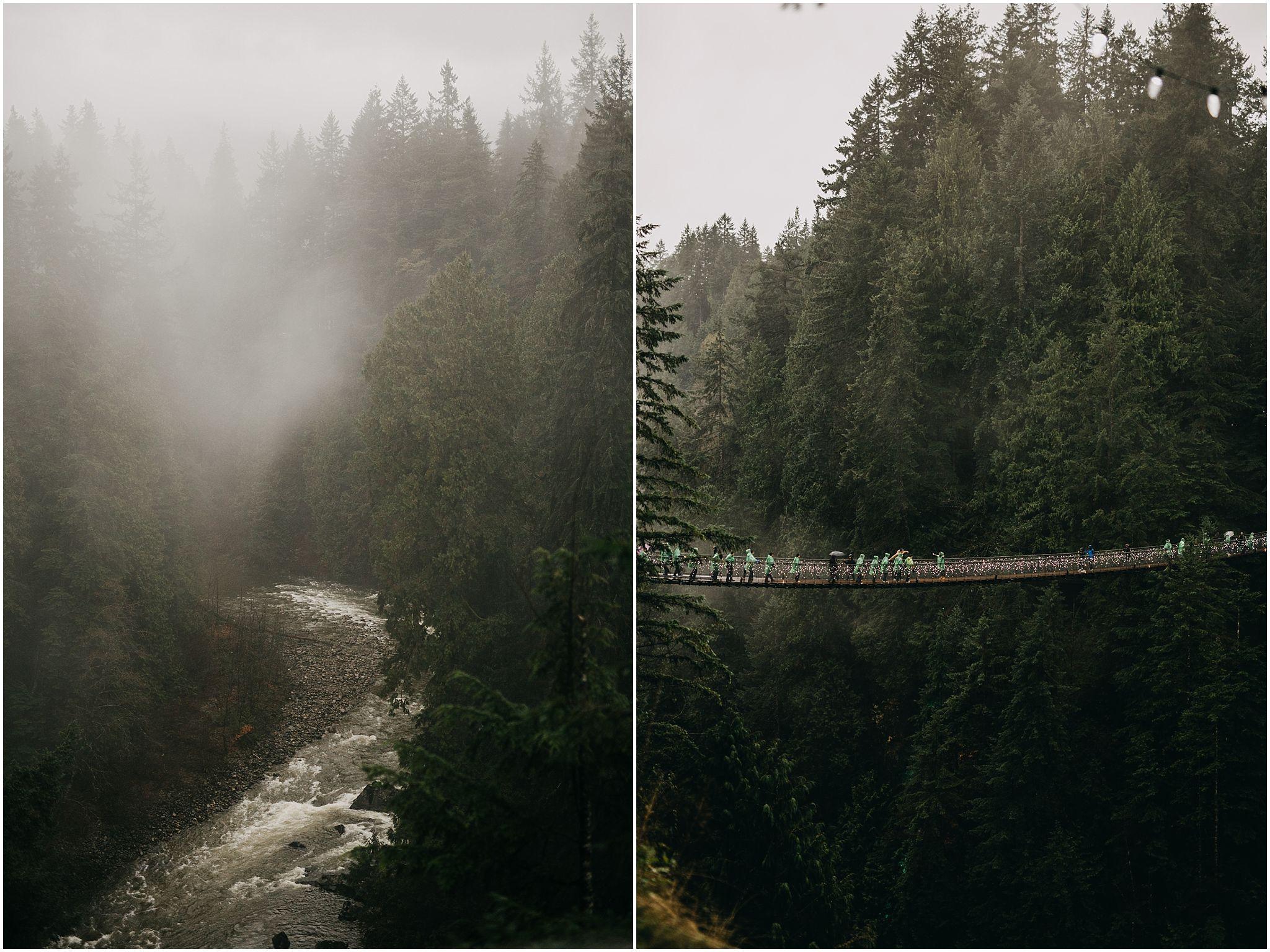 capilano suspension bridge rainy foggy beautiful pnw vibes