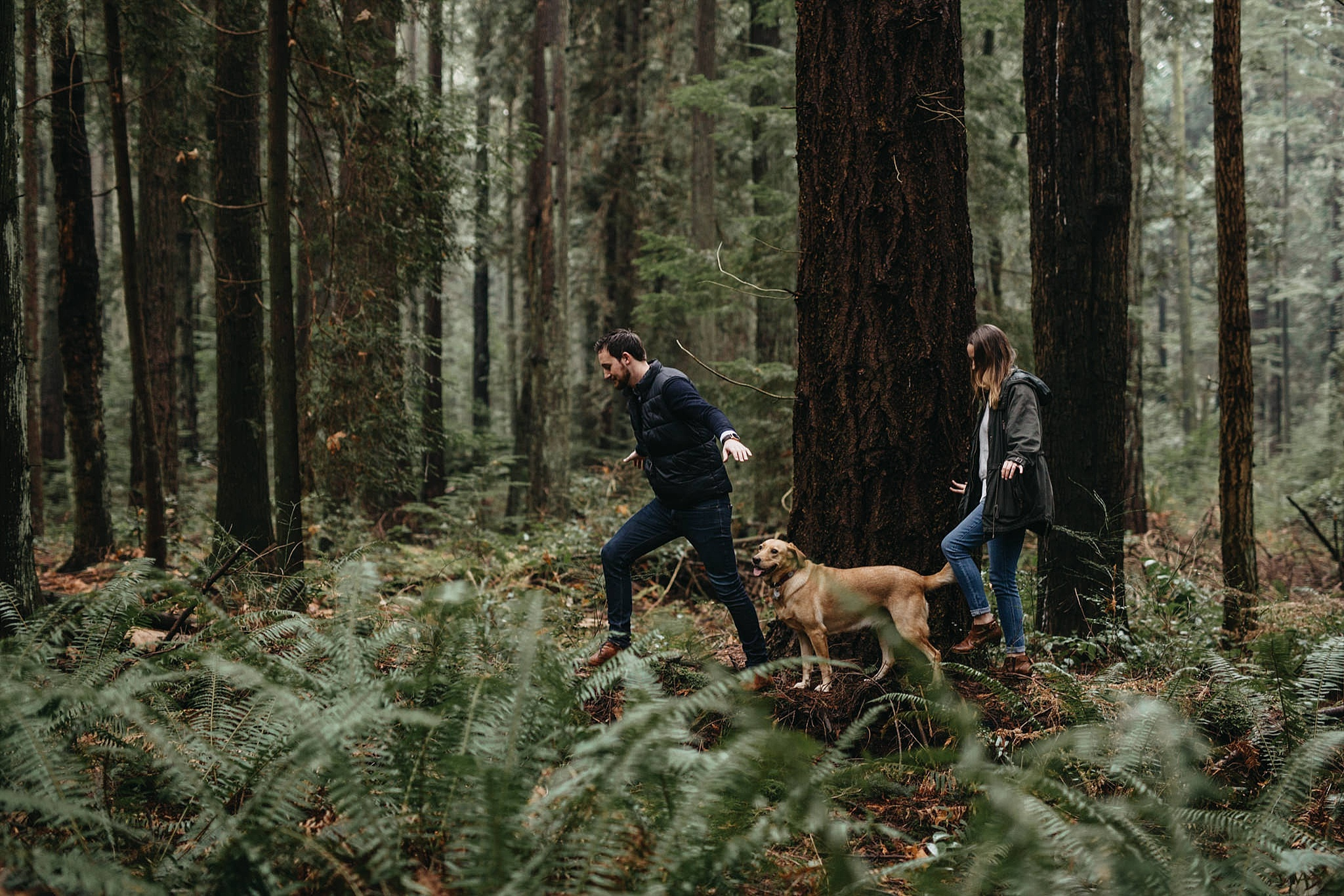 couple and dog walking on log engagement pacific spirit park