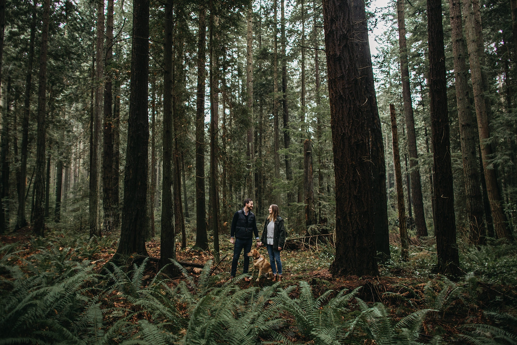 couple and dog standing in forest on log pacific spirit park engagement