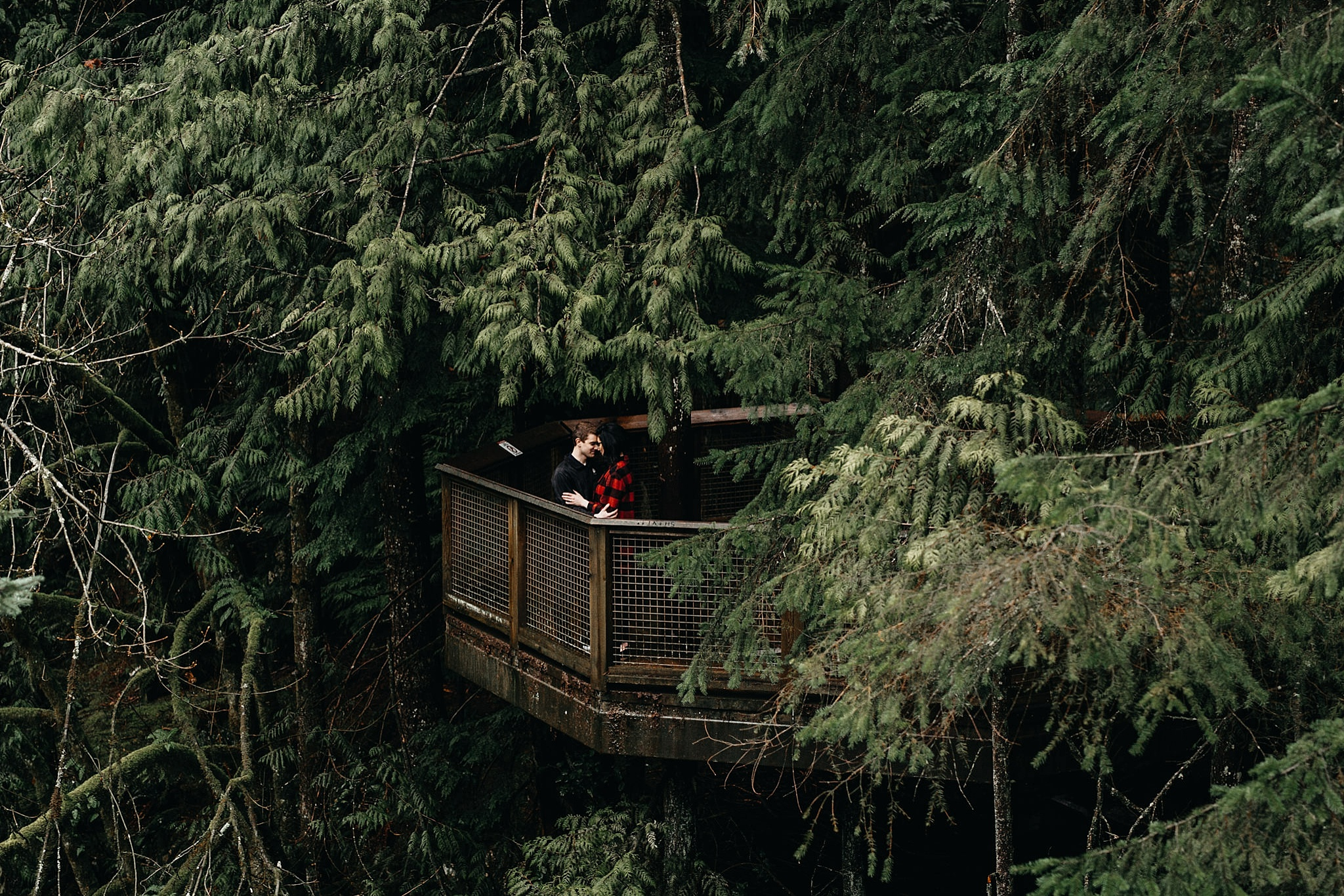 aileen-choi-photo-capilano-suspension-bridge-engagement-photos_0015.jpg