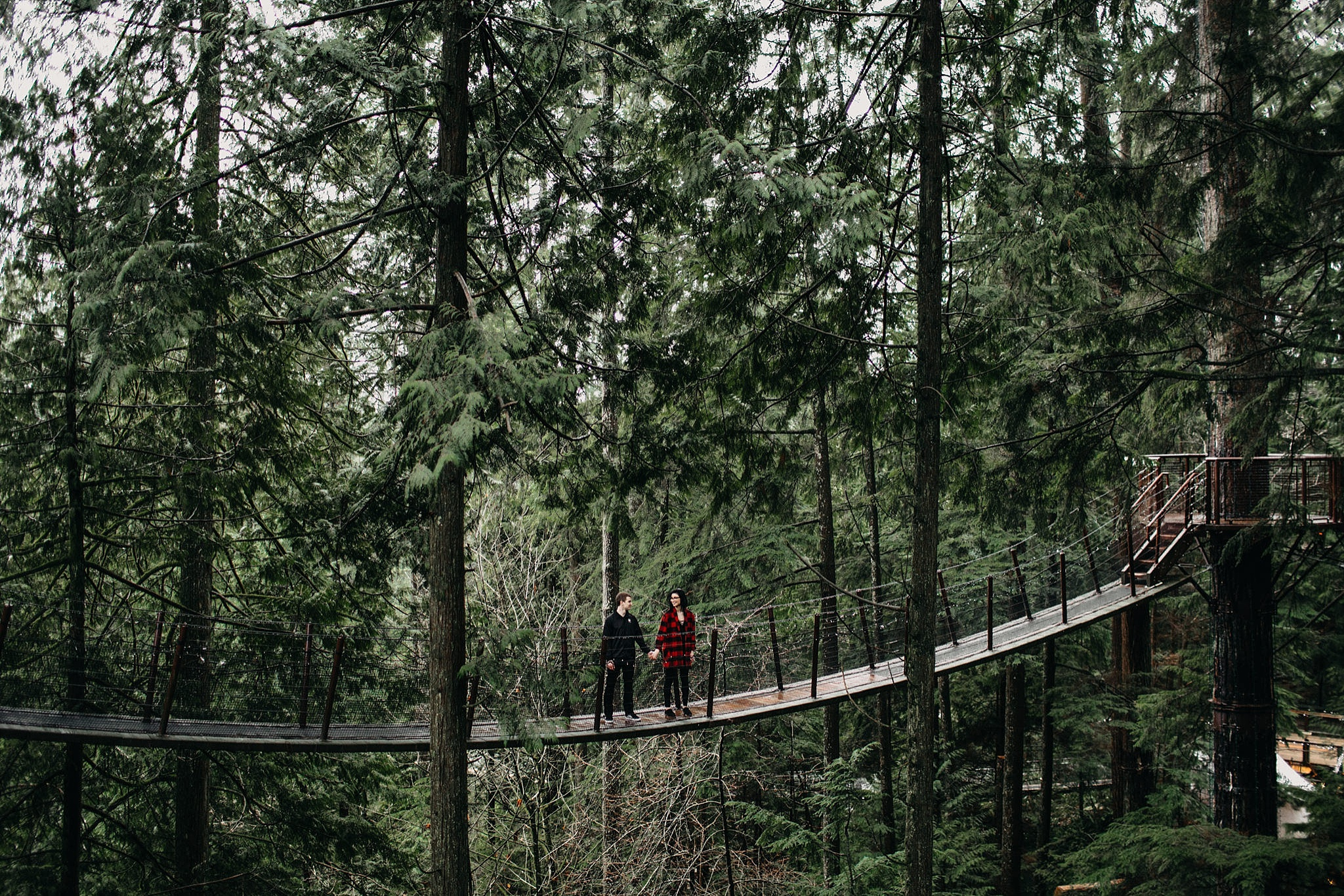 couple far away standing on bridge trees forest capilano suspension bridge