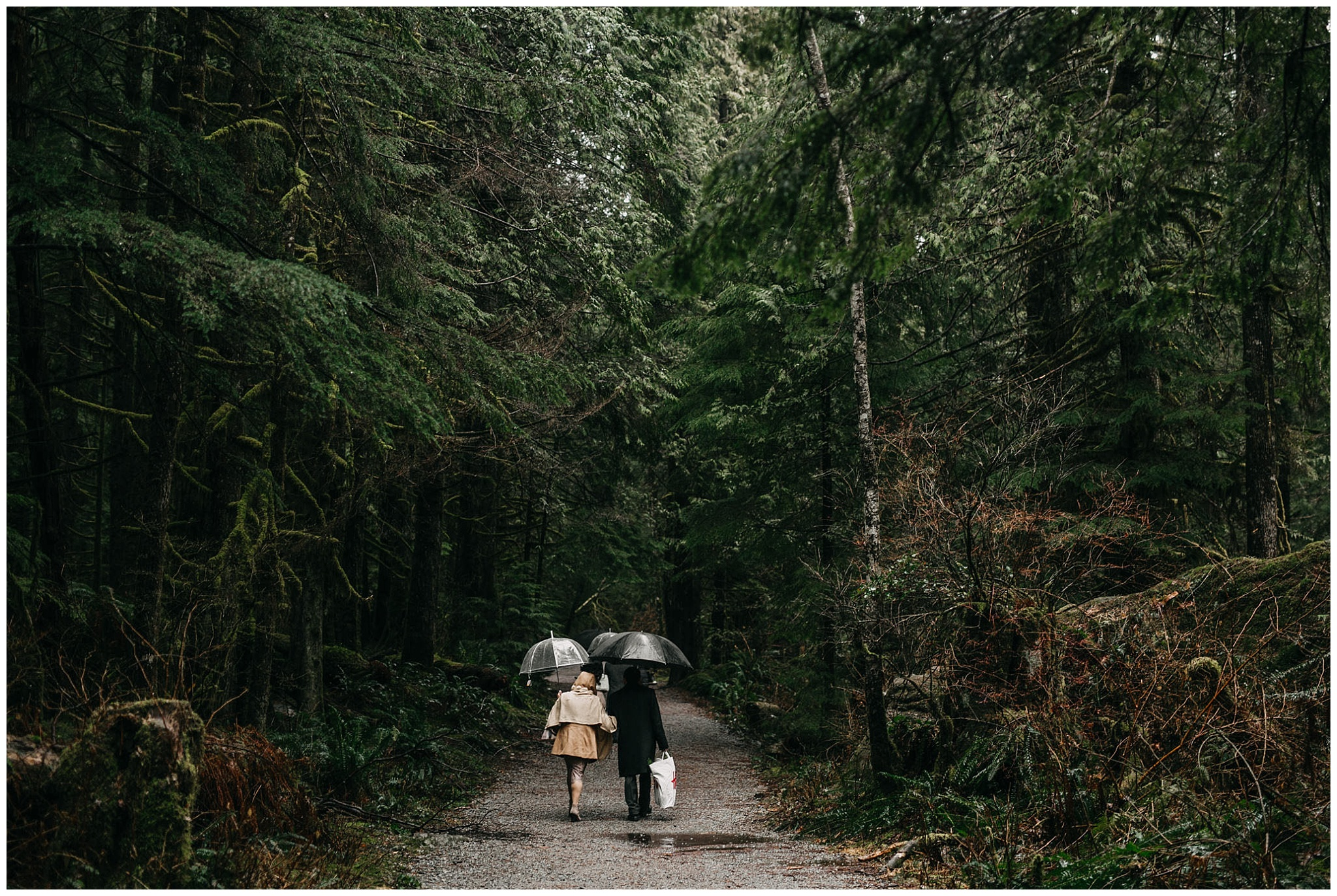 guests walking in forest to ceremony intimate golden ears wedding