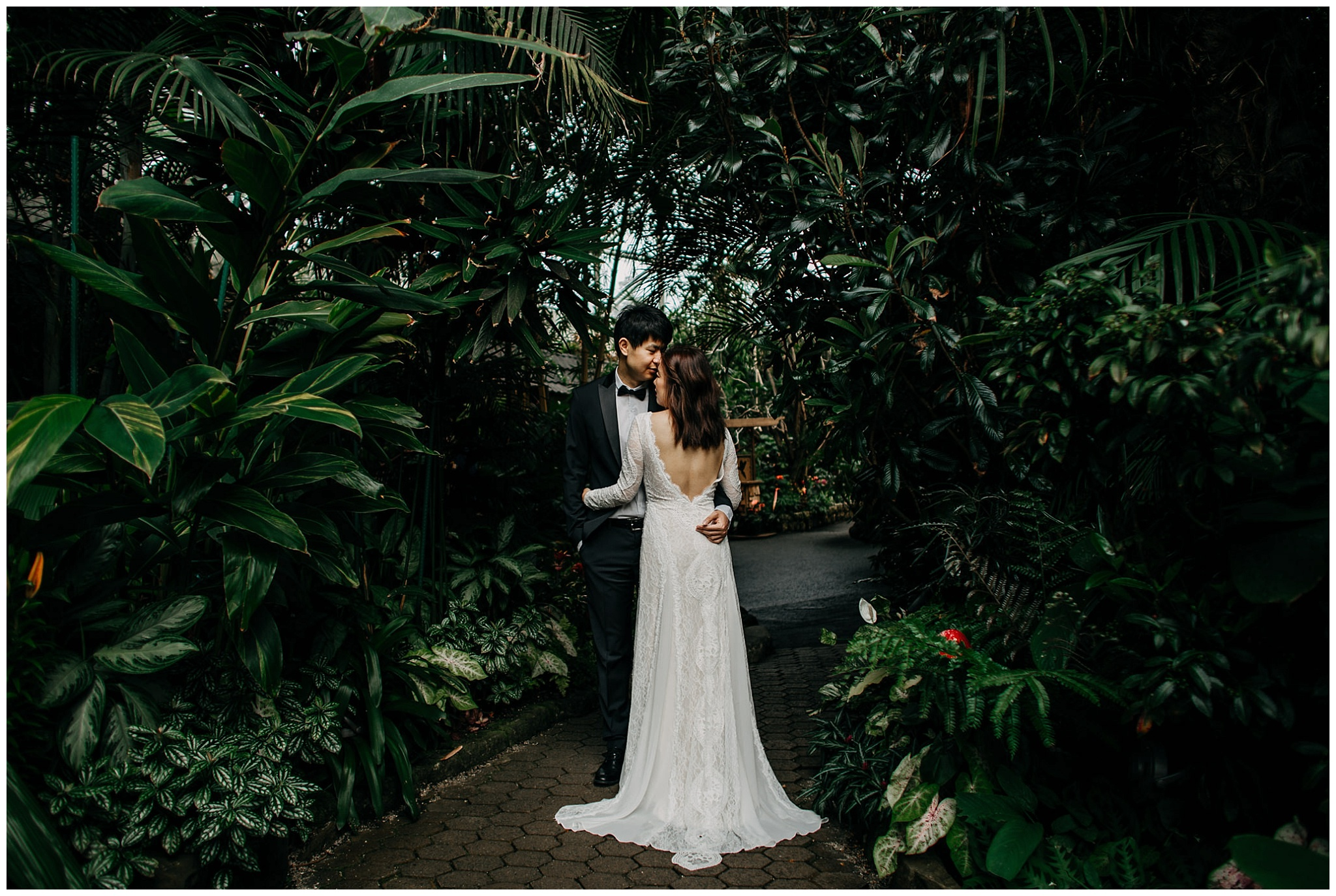 bride and groom engagement photos at bloedel conservatory