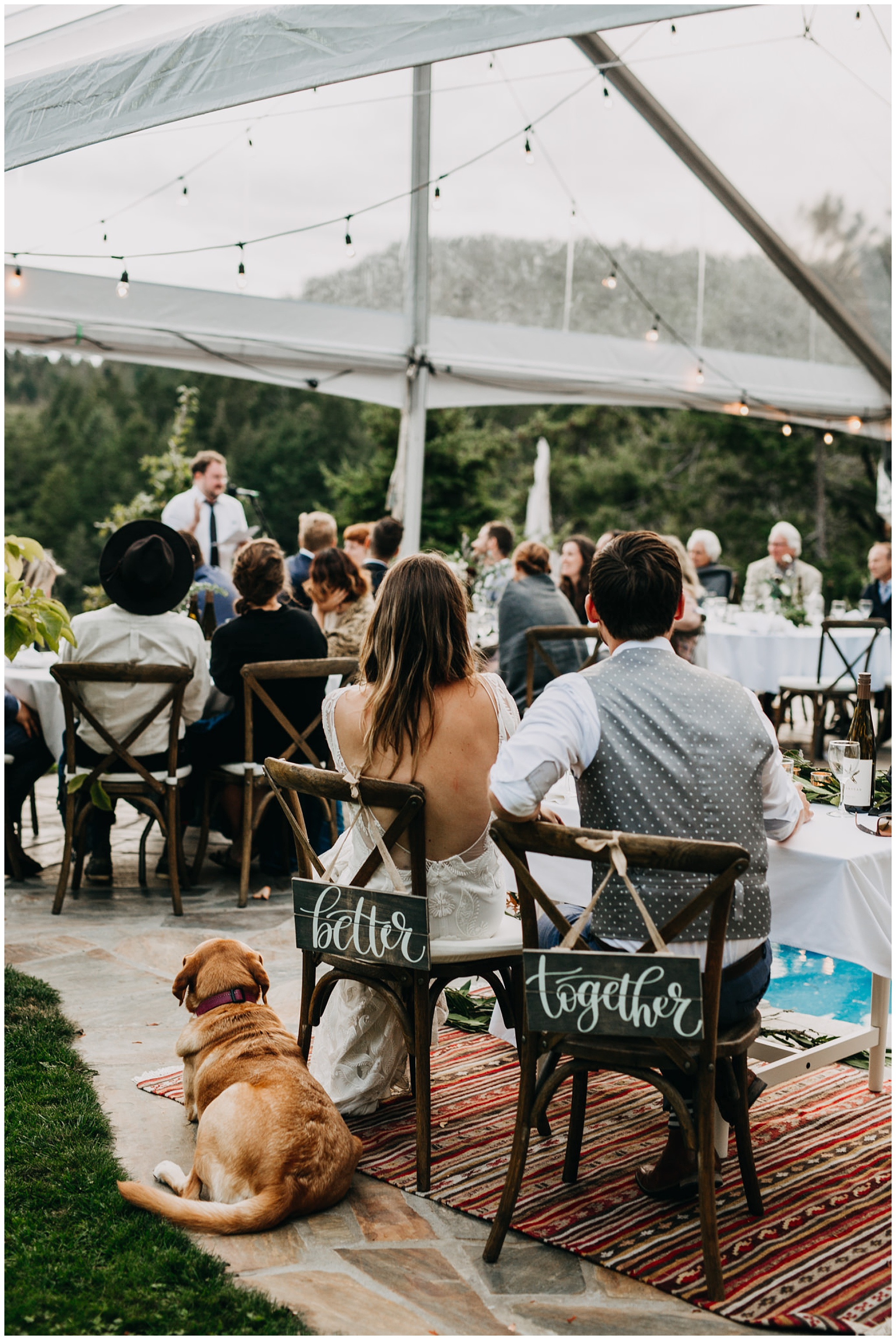 bride and groom with their dog listening to speeches at mayne island backyard wedding