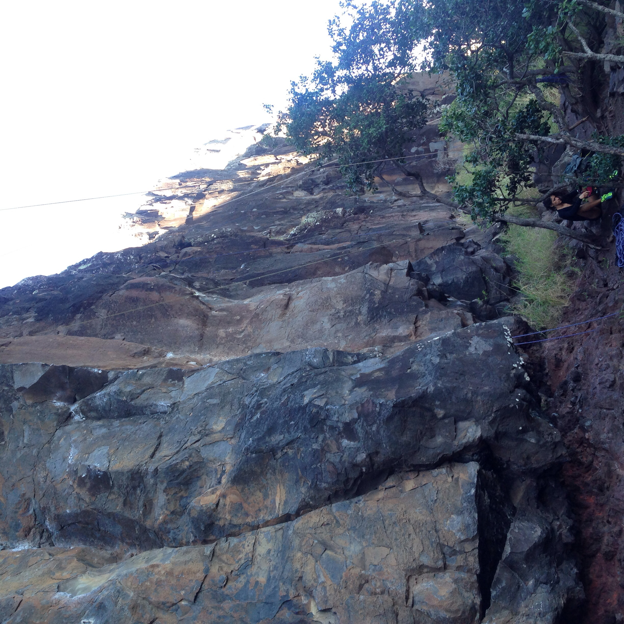 Climbed that!