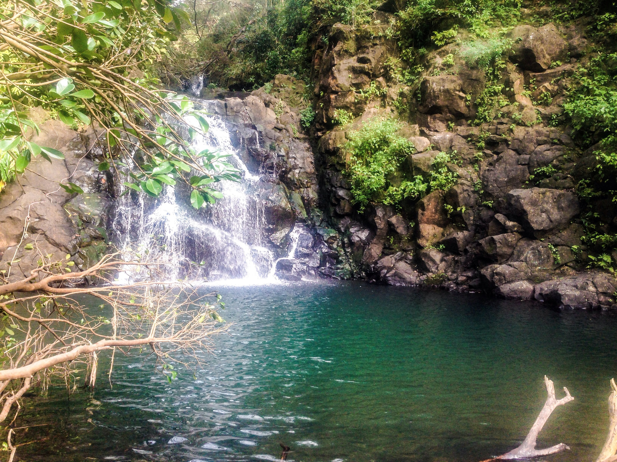 Beautiful water fall!