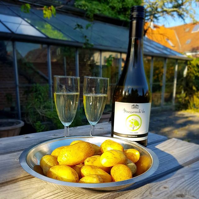 Jysk forret. One of the best part of starting Temper Chokolade has been getting to know all the local producers here in Jylland. New potatoes just hours from the ground from #økotopen in St. Darum and the perfect summer drink, Gooseberry sparkling wine from #vibegaard in Skærbæk. #temperchokolade #ribe #danmark #Denmark #sydvestjyskesmagsoplevelser #jylland #lokaleråvarer #hygge