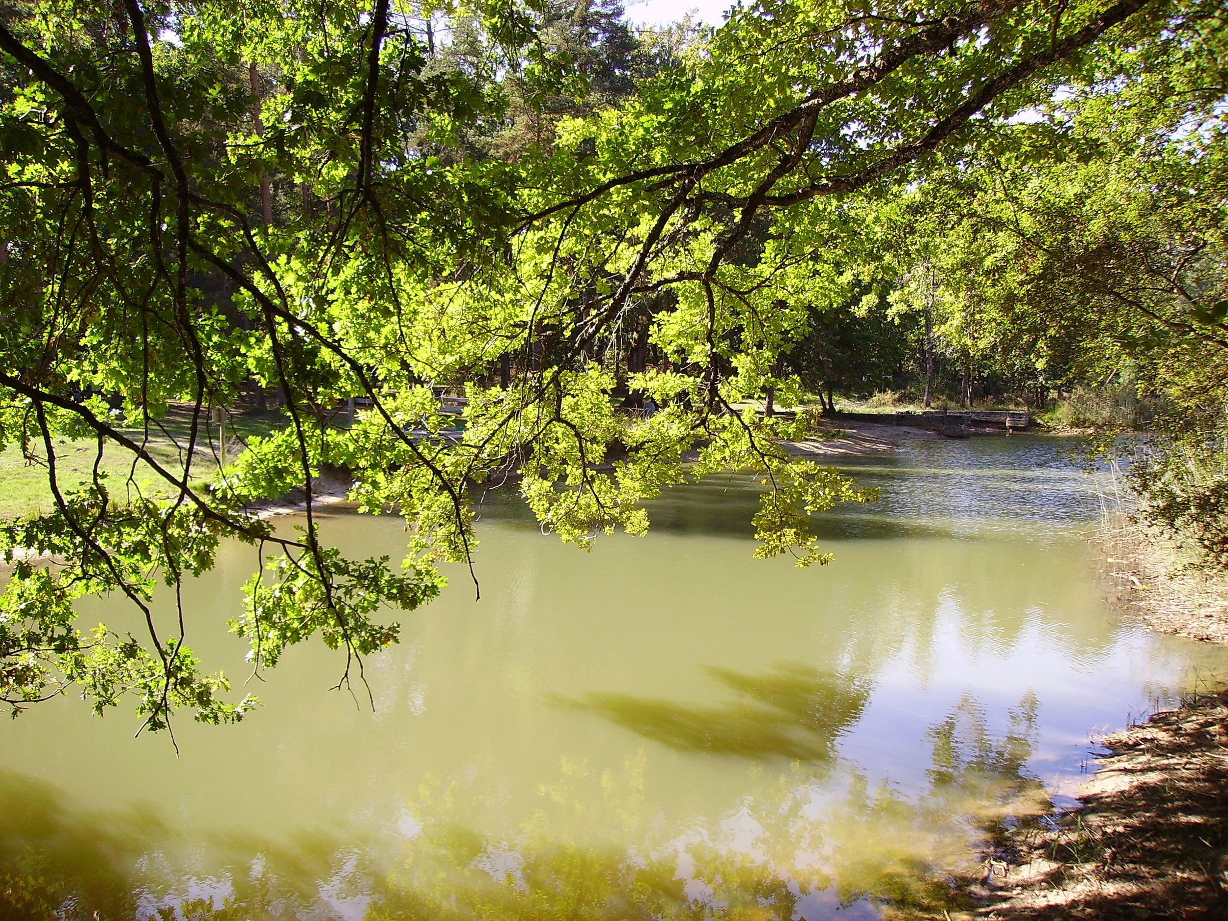 - Localisée à l'ouest du Périgord entre deux rivières, la Rizonne, affluent de la Dronne, au nord et l'Isle au sud, la Double est une région forestière aux formes douces, parcourue par de nombreux ruisseaux et parsemée de nombreux étangs. Comparée parfois à la Sologne, elle présente les mêmes sols argilo-sablonneux. Terre de refuge, devenue inhospitalière et même hostile après une exploitation sylvicole systématique, la Double présente aujourd'hui un paysage très particulier et un habitat rural traditionnel spécifique.