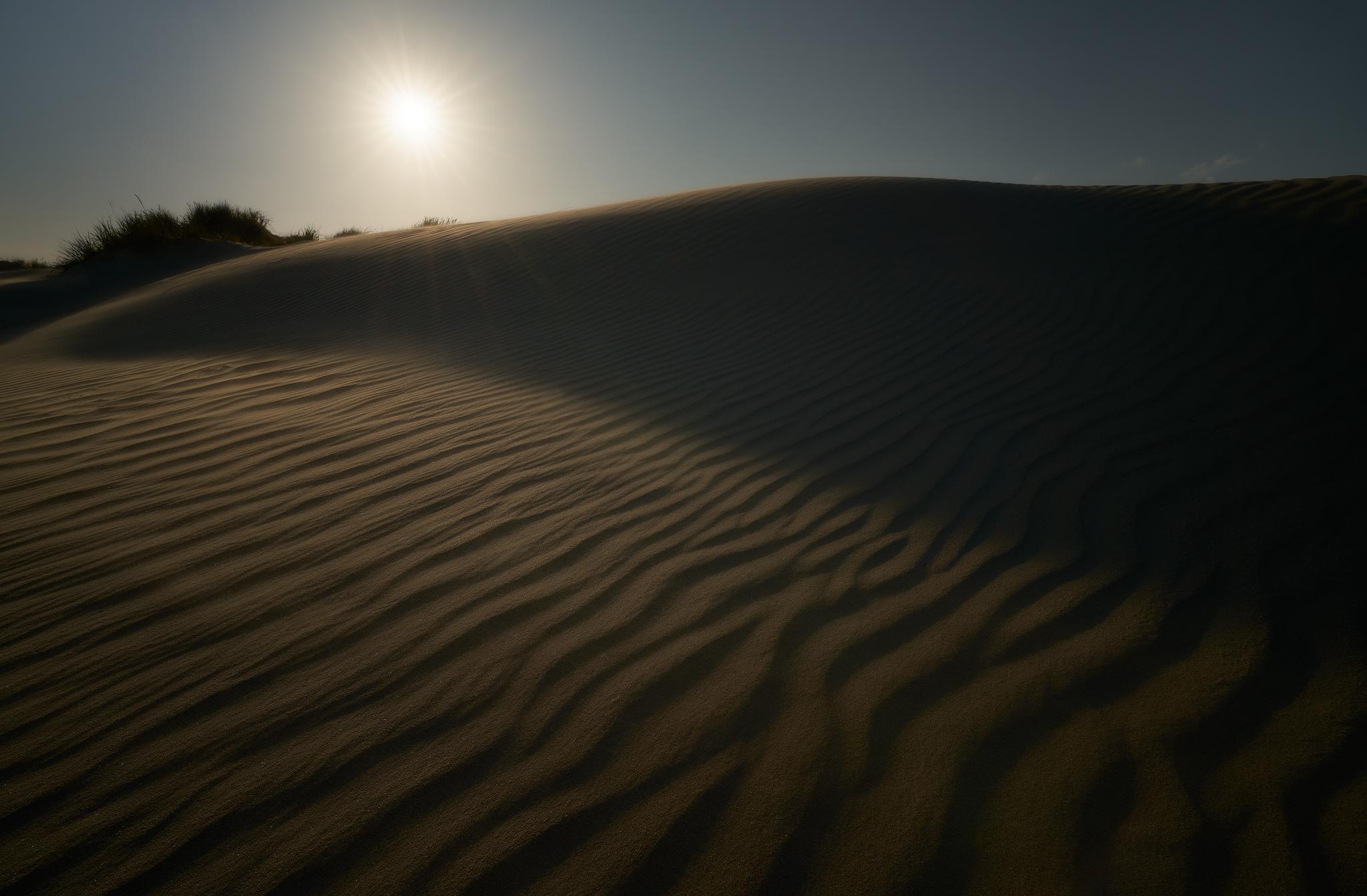 Dunes  June 2019