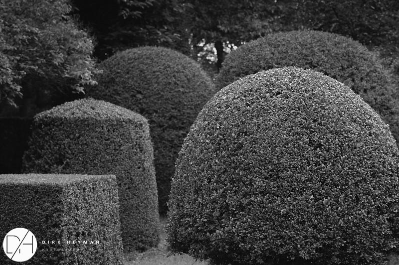 Garden Jacques Wirtz 4* - Late Summer_by_Dirk Heyman (dh_photo@bluewin.ch)_1677.jpg