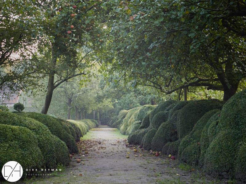 Garden Jacques Wirtz 4* - Late Summer_by_Dirk Heyman (dh_photo@bluewin.ch)_1642.jpg