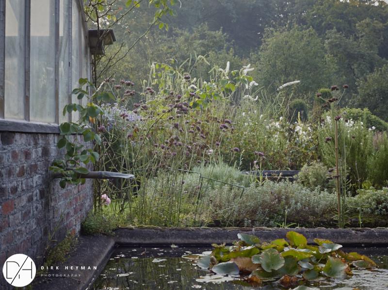 Garden Jacques Wirtz 4* - Late Summer_by_Dirk Heyman (dh_photo@bluewin.ch)_1648.jpg