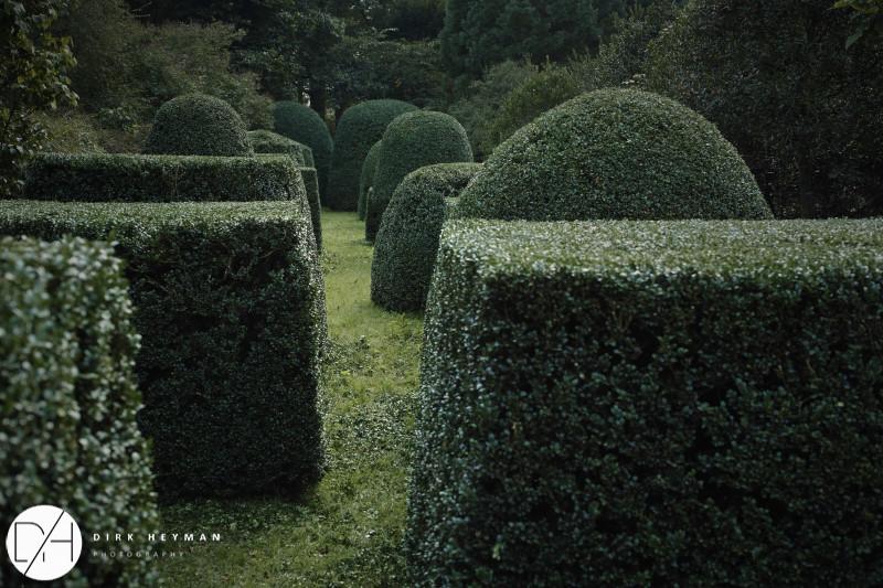 Garden Jacques Wirtz 4* - Late Summer_by_Dirk Heyman (dh_photo@bluewin.ch)_1683.jpg