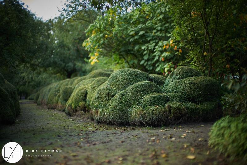 Garden Jacques Wirtz 4star - Late Summer_by_Dirk Heyman (dh_photo@bluewin.ch)_1684.jpg