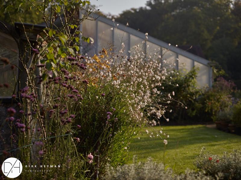 Garden Jacques Wirtz 4* - Late Summer_by_Dirk Heyman_1652.jpg