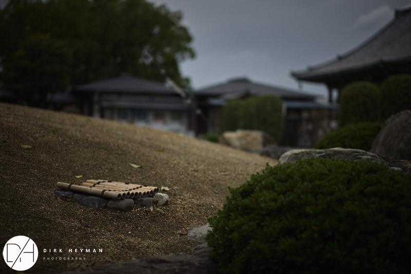 Kyoto 2014 All_by_Dirk Heyman_210.jpg