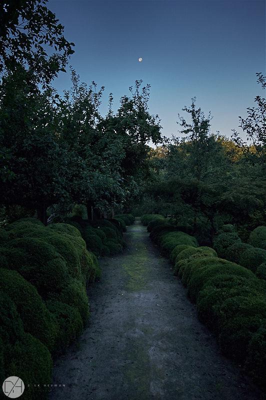 Garden Jacques Wirtz Summer by D Heyman 7125.jpg
