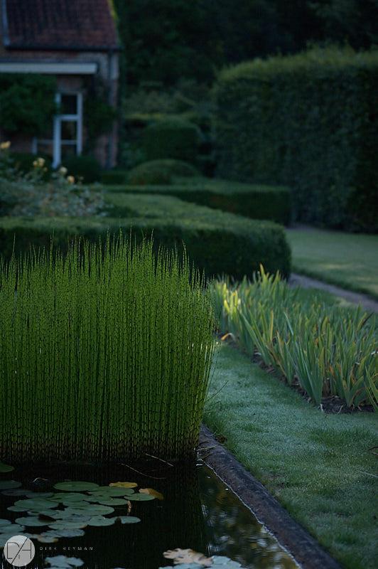 Garden Jacques Wirtz Summer by D Heyman 7140.jpg