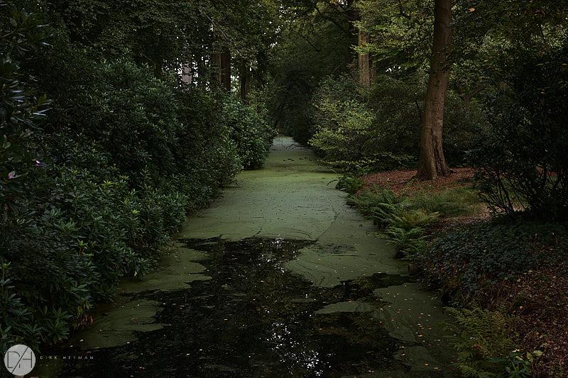 Garden Jacques Wirtz by D Heyman 7365.jpg