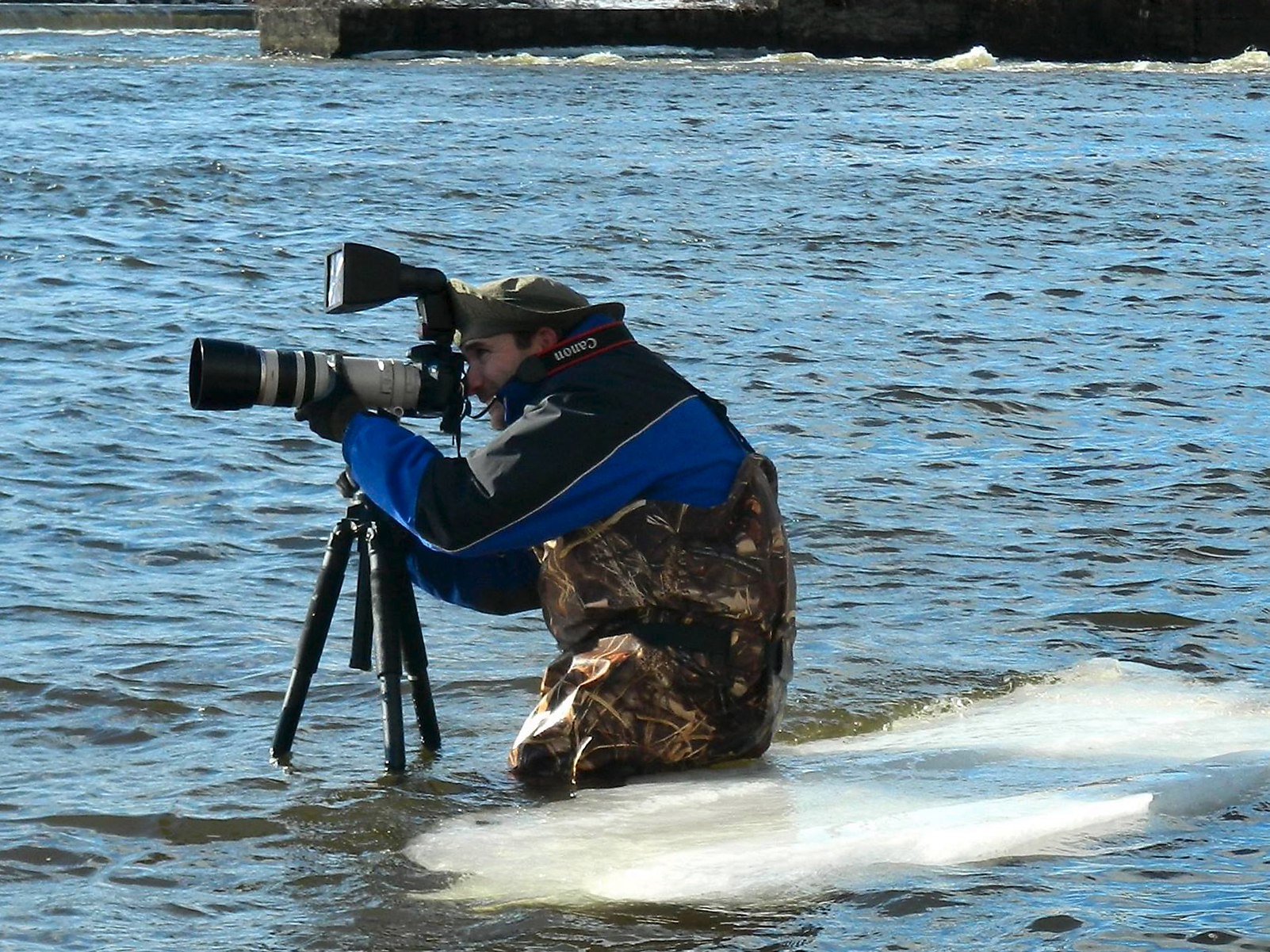 Photographing Barrow's Goldeneye, Common Goldeneye and Muskrat in the icy Saco River.  (Photo courtesy of Misha Charleson)