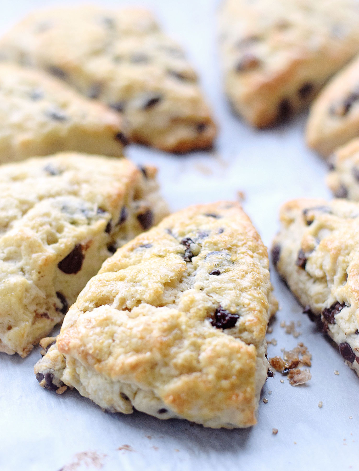 Tender Chocolate Chip Scones: easy, light, fluffy, tender scones packed with chocolate chips. Made with no butter, just heavy cream! | TrufflesandTrends.com