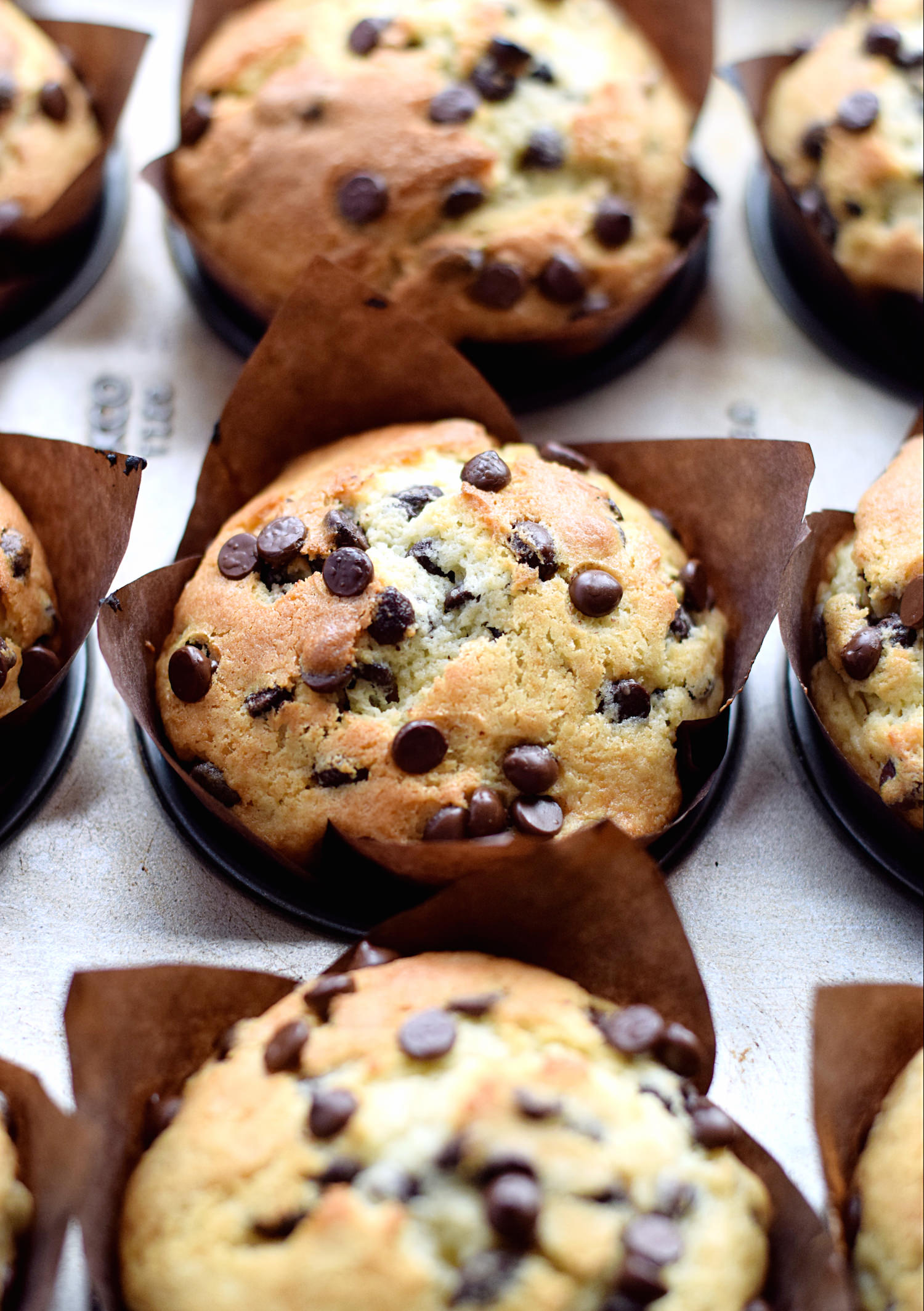 Amazing Chocolate Chip Muffins