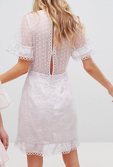 Stevie May Exclusive Spot Tulle With Embroidery Mini Dress