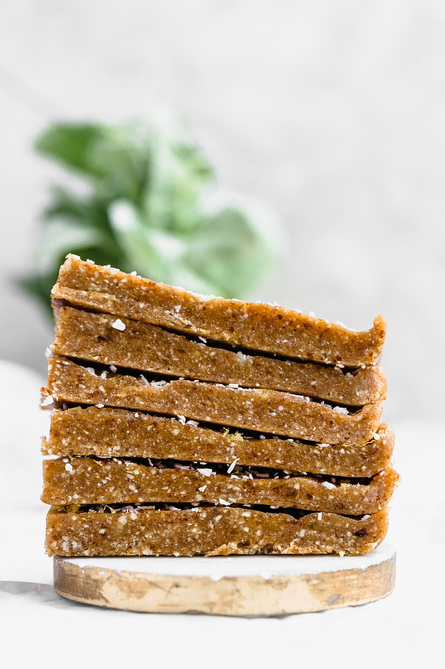 Raw Cashew Coconut Tahini Bars: chewy, rich, nutrient-packed bars made with cashews, dates, coconut, and tahini. Vegan, gluten-free, and so easy!   TrufflesandTrends.com