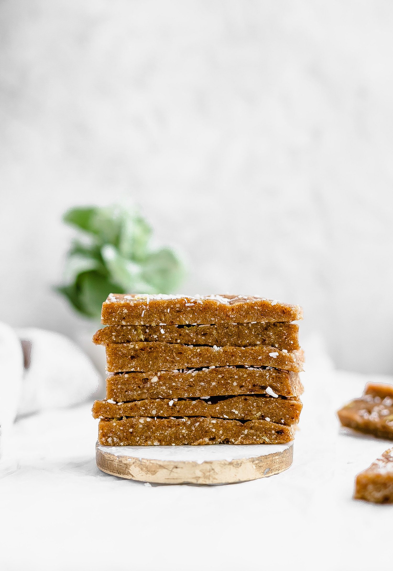 Raw Cashew Coconut Tahini Bars: chewy, rich, nutrient-packed bars made with cashews, dates, coconut, and tahini. Vegan, gluten-free, and so easy! | TrufflesandTrends.com