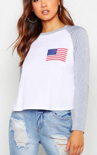 Boohoo American Flag Raglan Printed T-Shirt