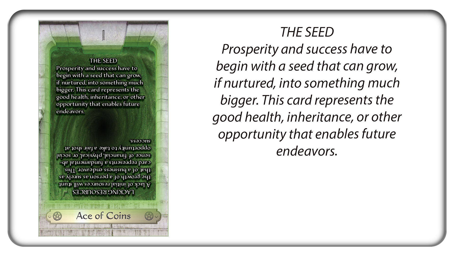 The Ace of Coins: The Seed