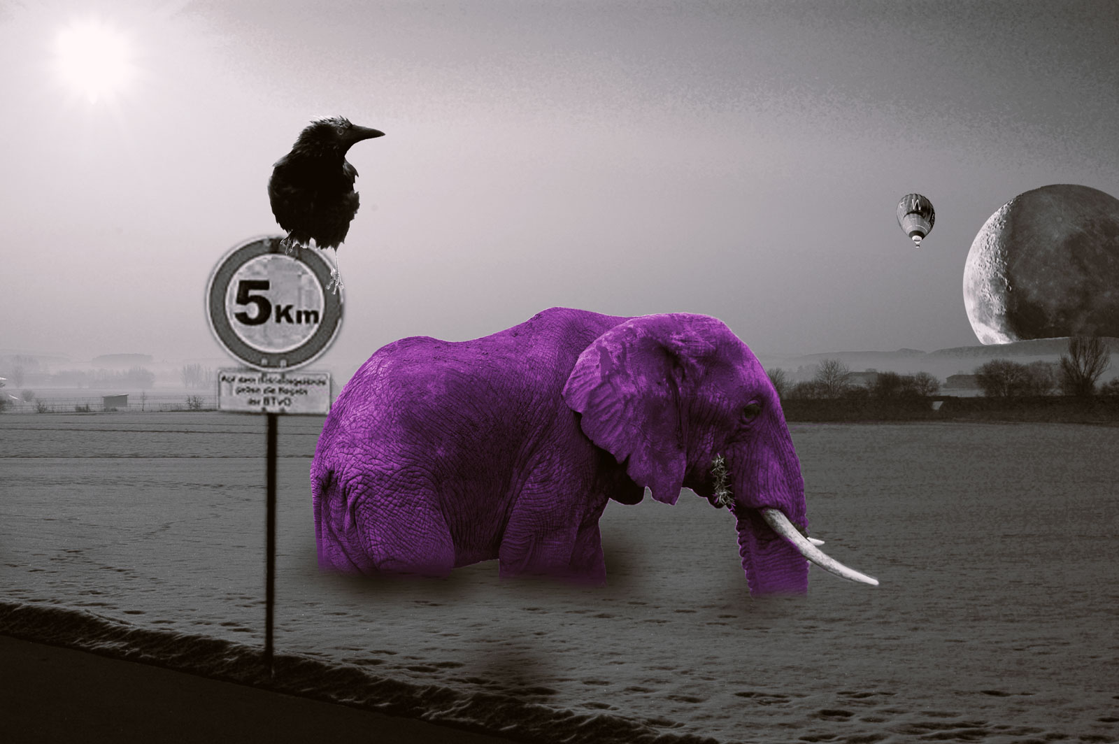 """""""Elephant"""" - click to enlarge"""