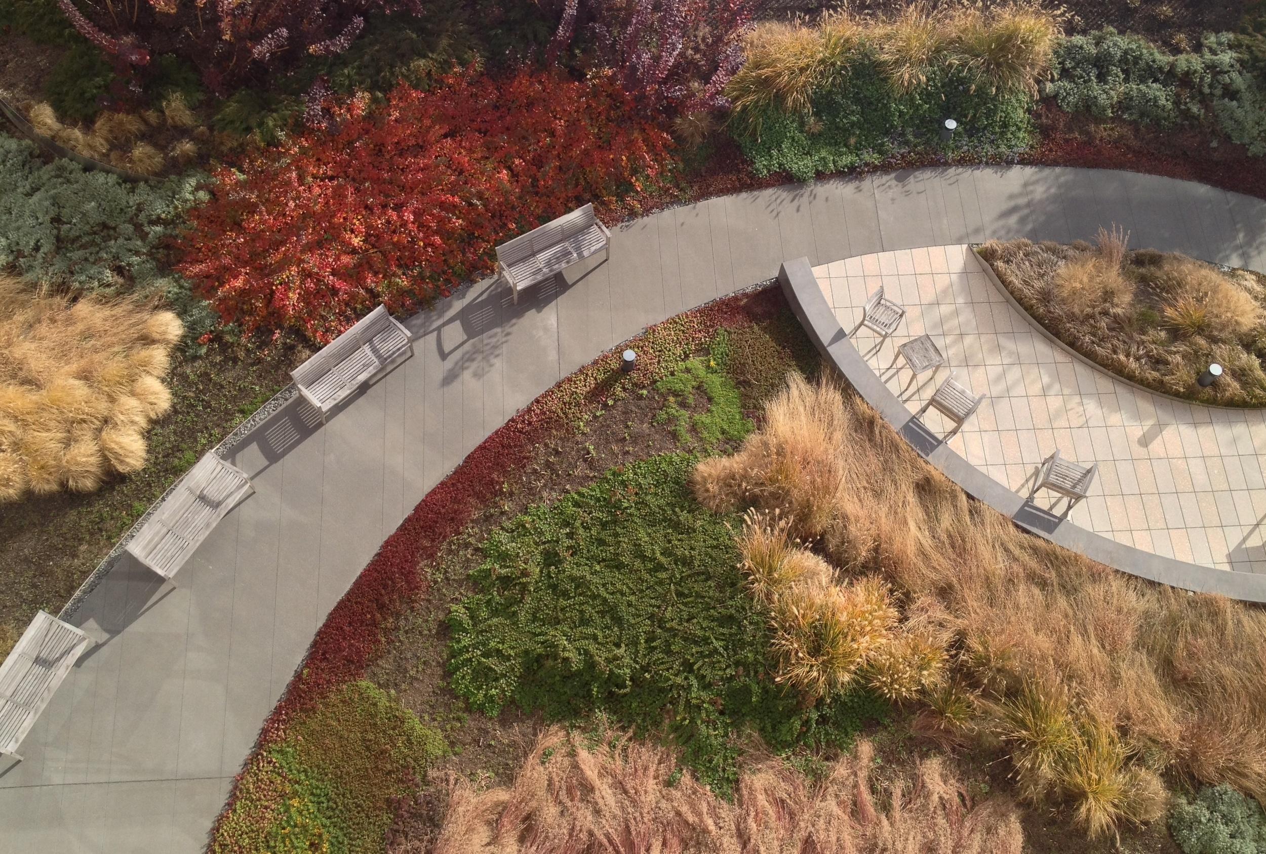 Roof Garden 1.JPG