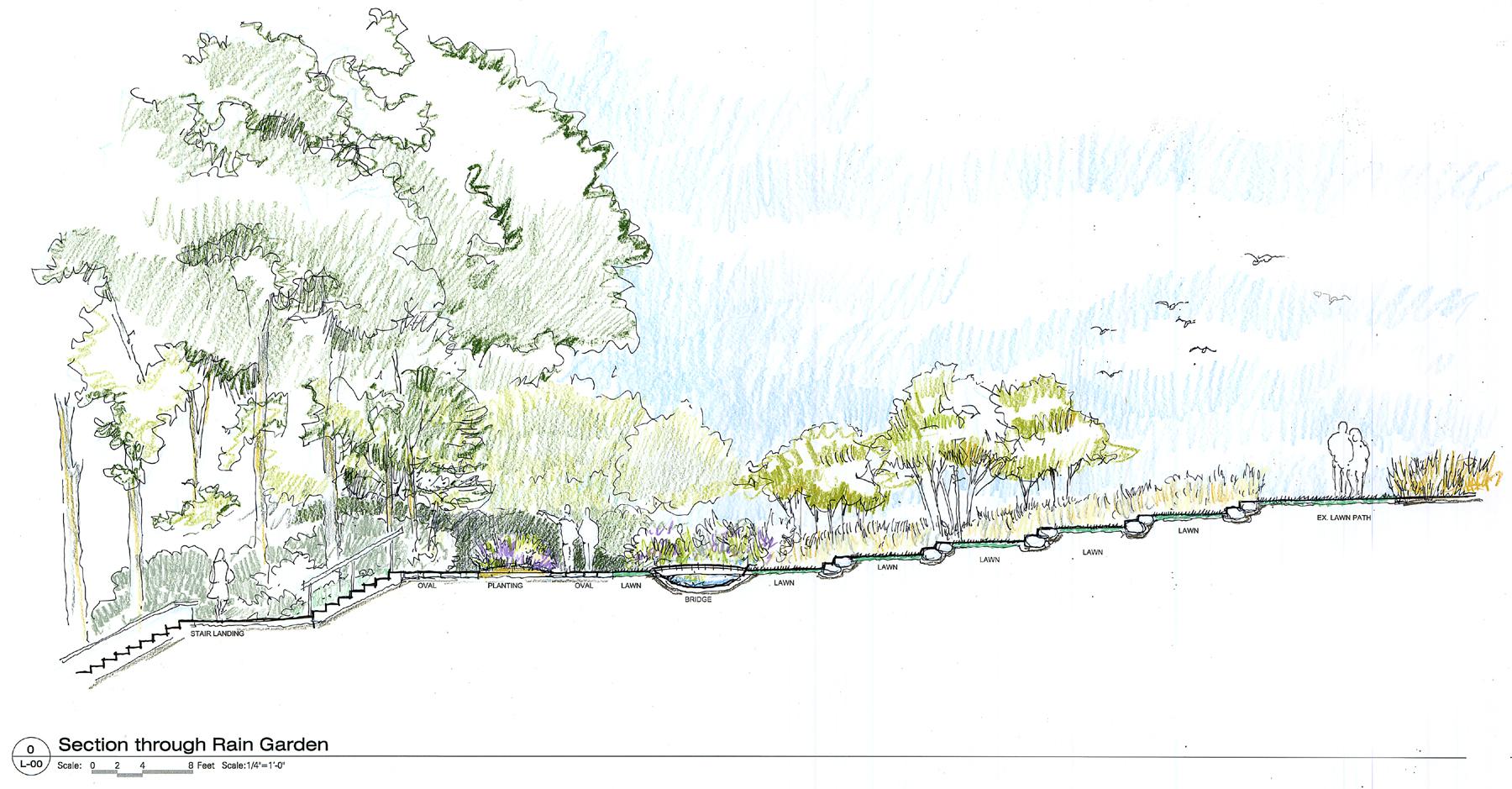 HS Park-Raingarden section sketch.jpg