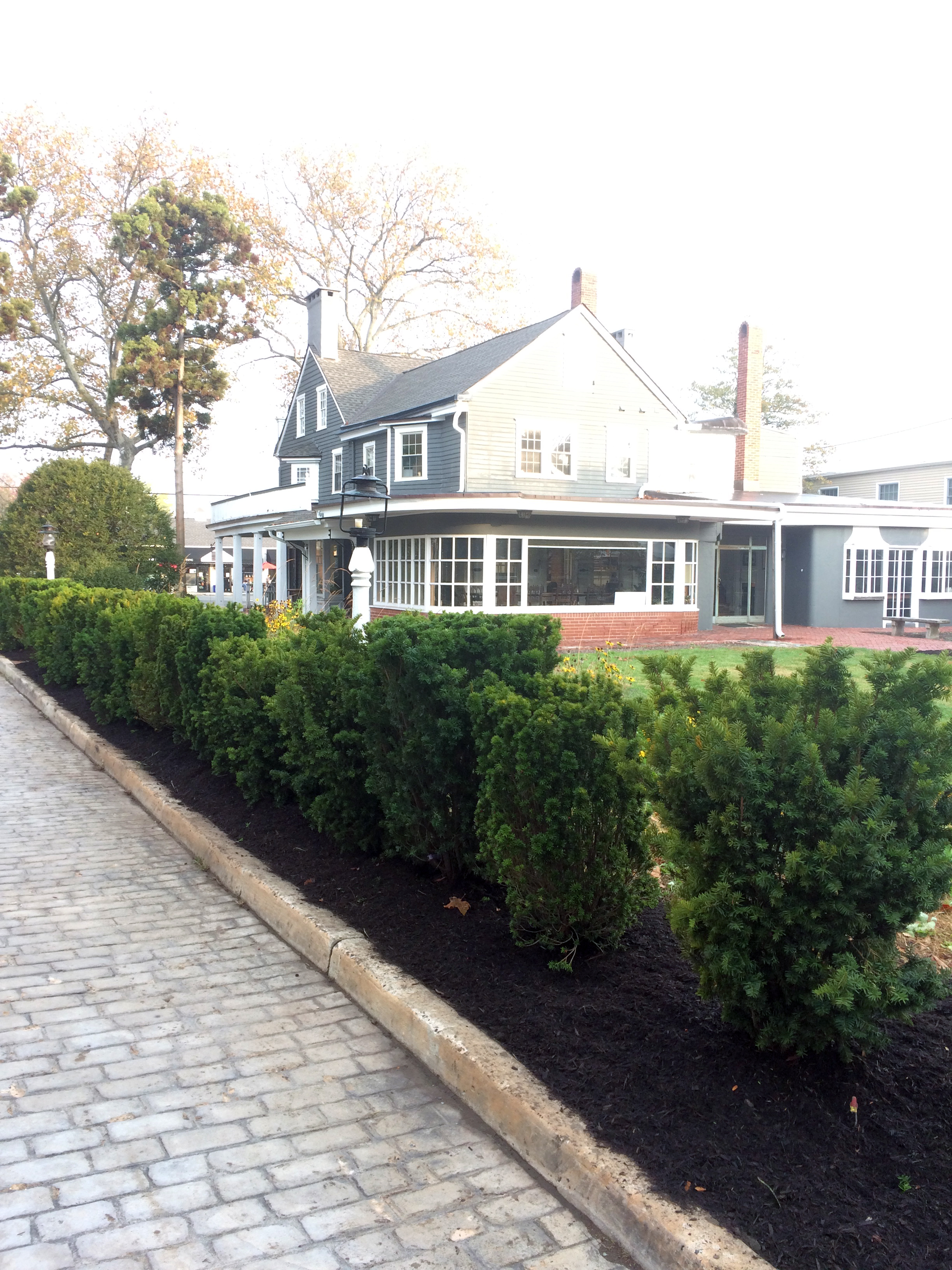 Hedge Row after
