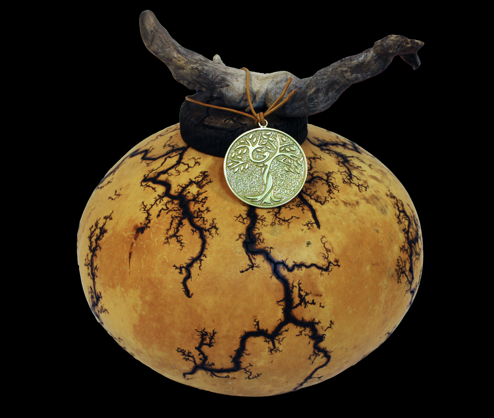 gourd-adult.png