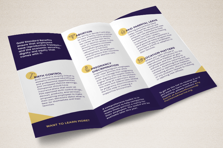 Access for Success Brochure for NARAL Pro-Choice America. April 2019.  PDF
