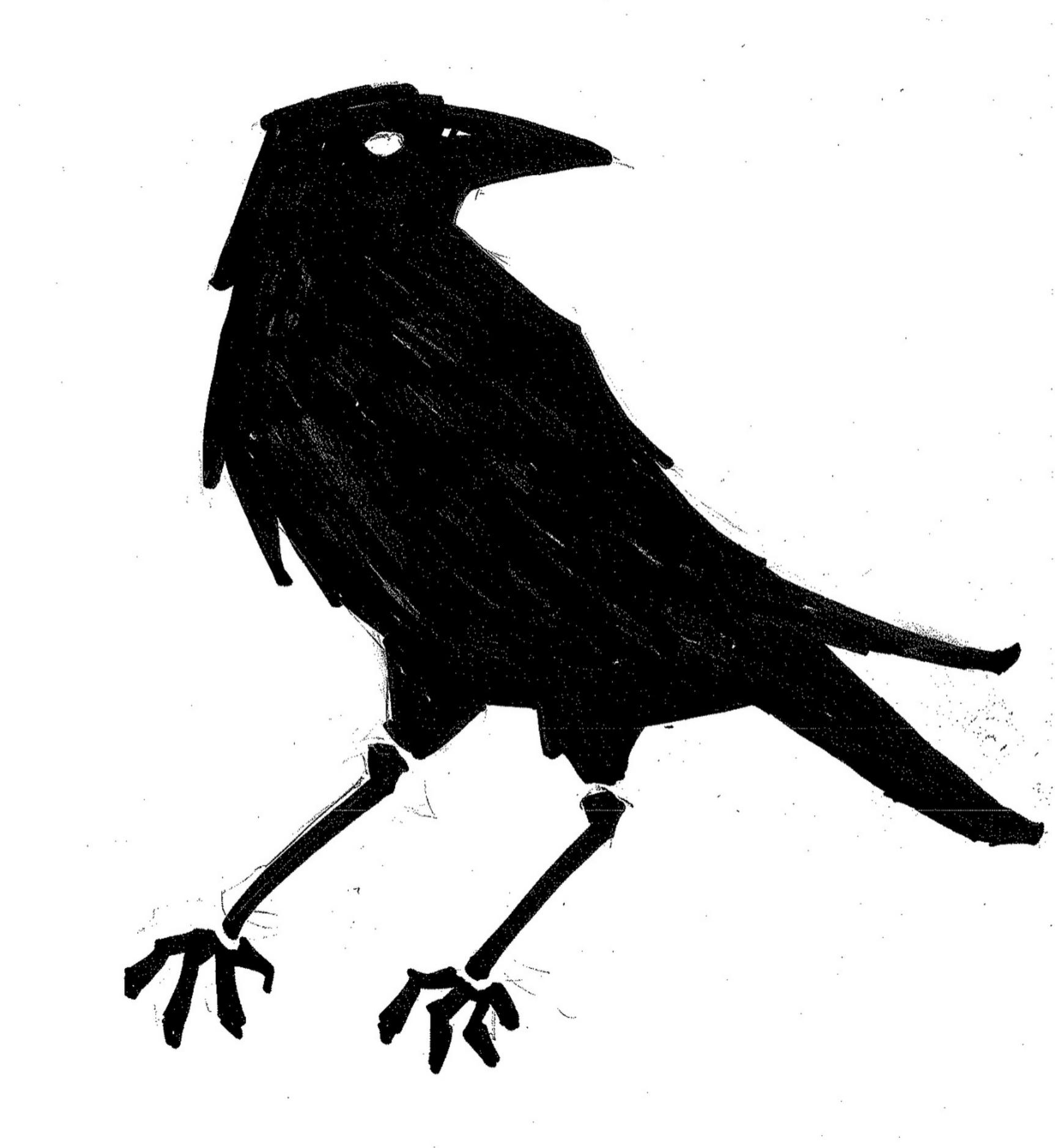 Crow Echo Trace Stencil Concept