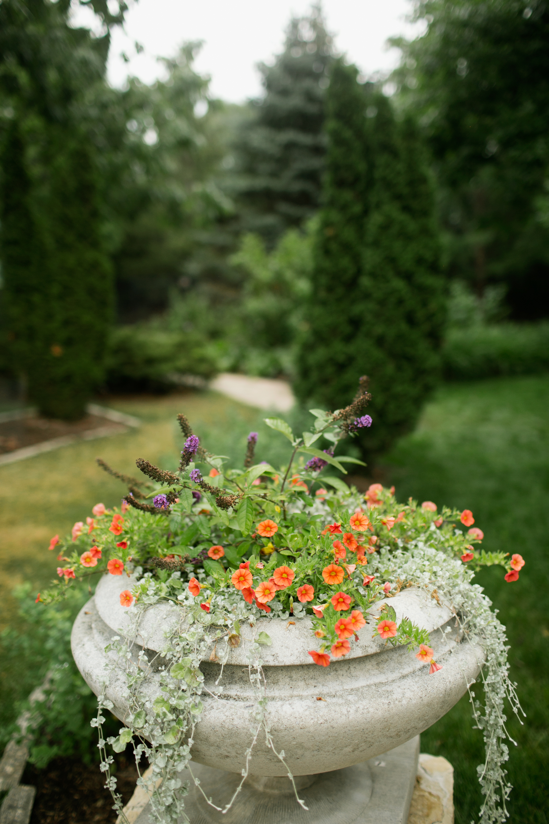 things to do in Ames Iowa Reiman Gardens
