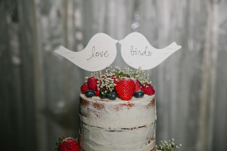 naked wedding cake Iowa wedding