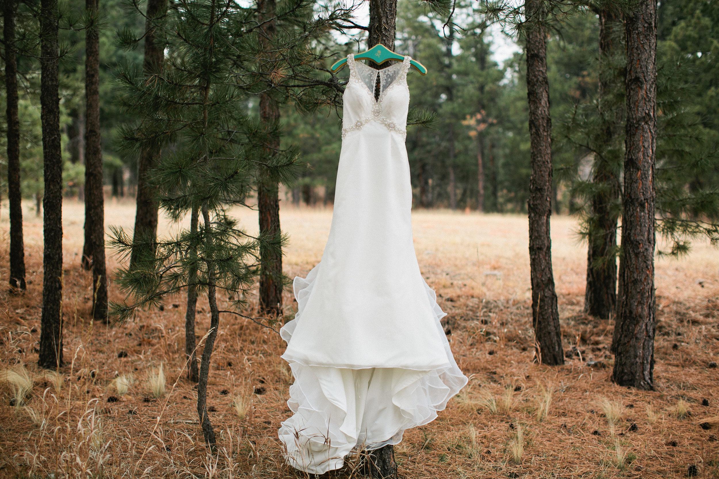 Iowa wedding dresses, bridal shops, and bridal accessories