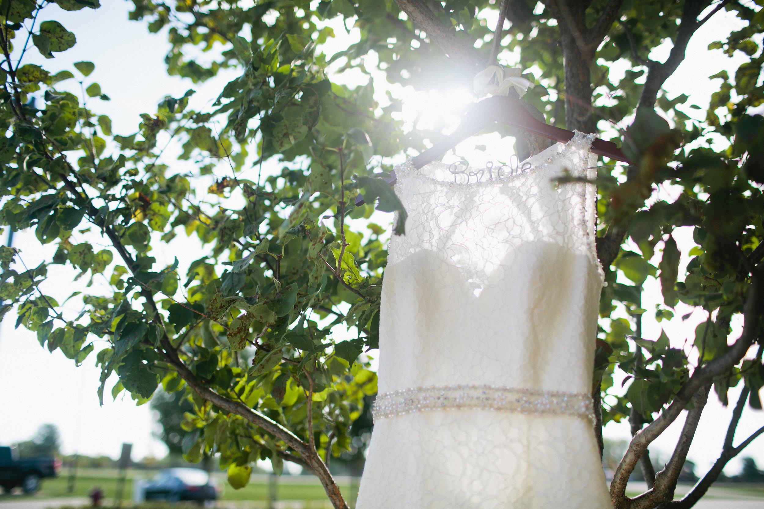 ames Iowa photographers bride's wedding dress hanging on tree