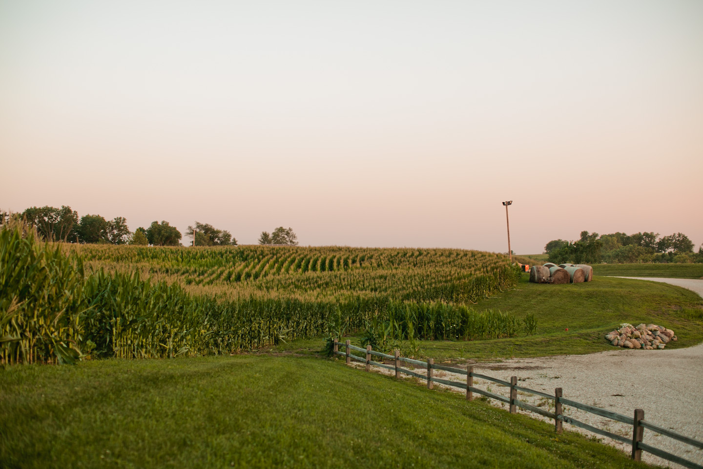 view of the land around sunset ridge barn in the summer with corn and fence