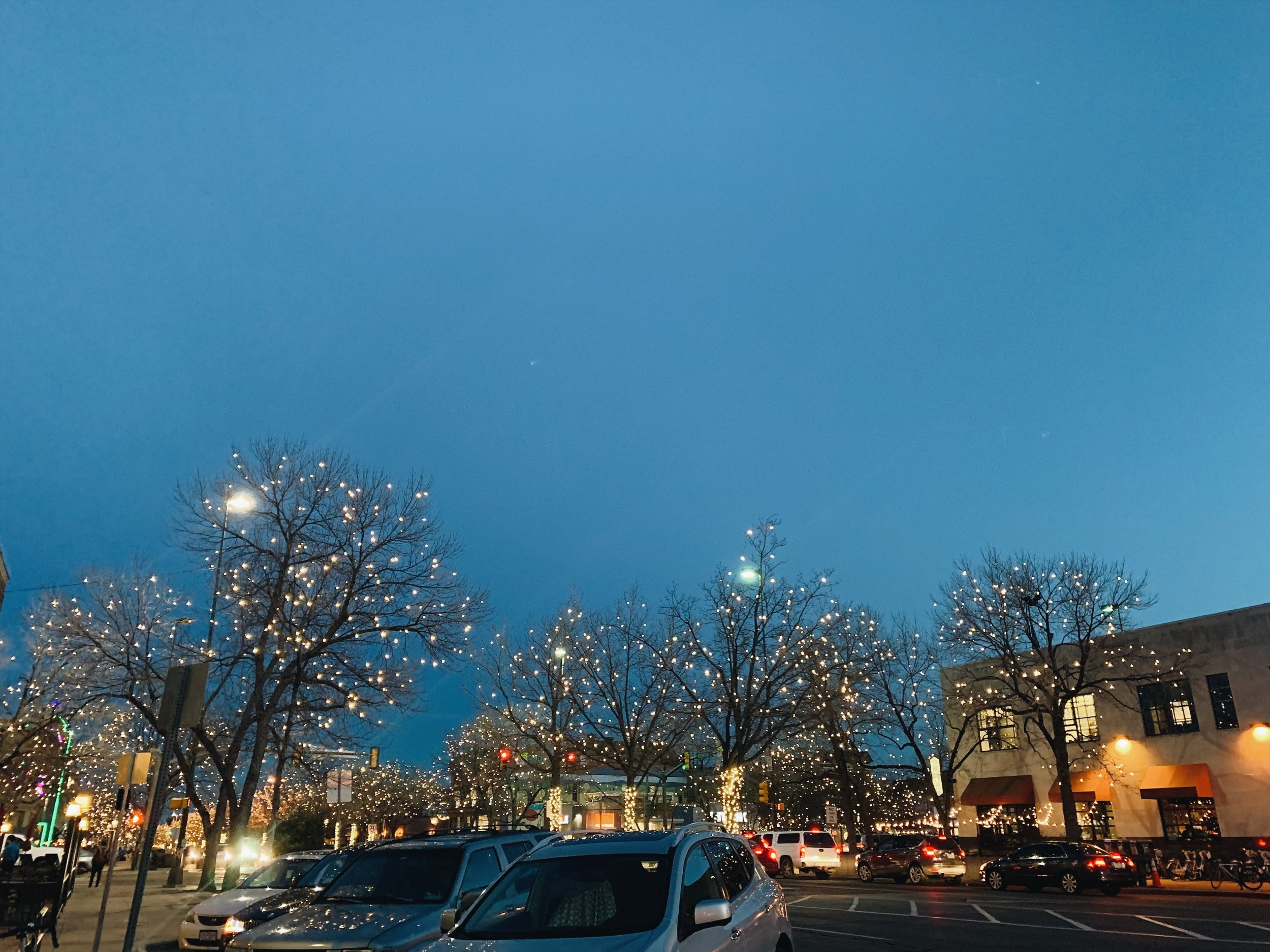 fort collins Christmas lights