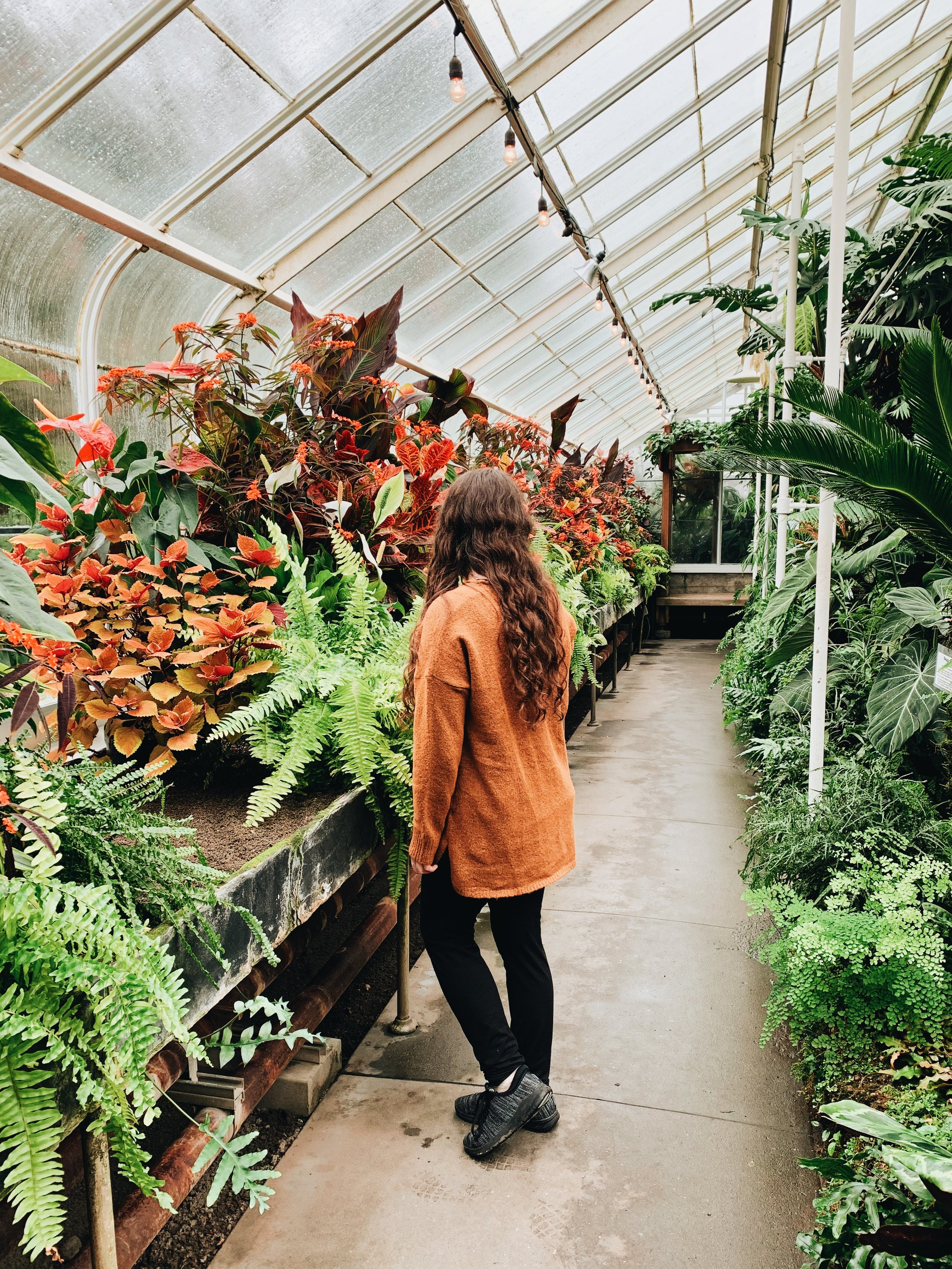 volunteer conservatory in Seattle for free january and february