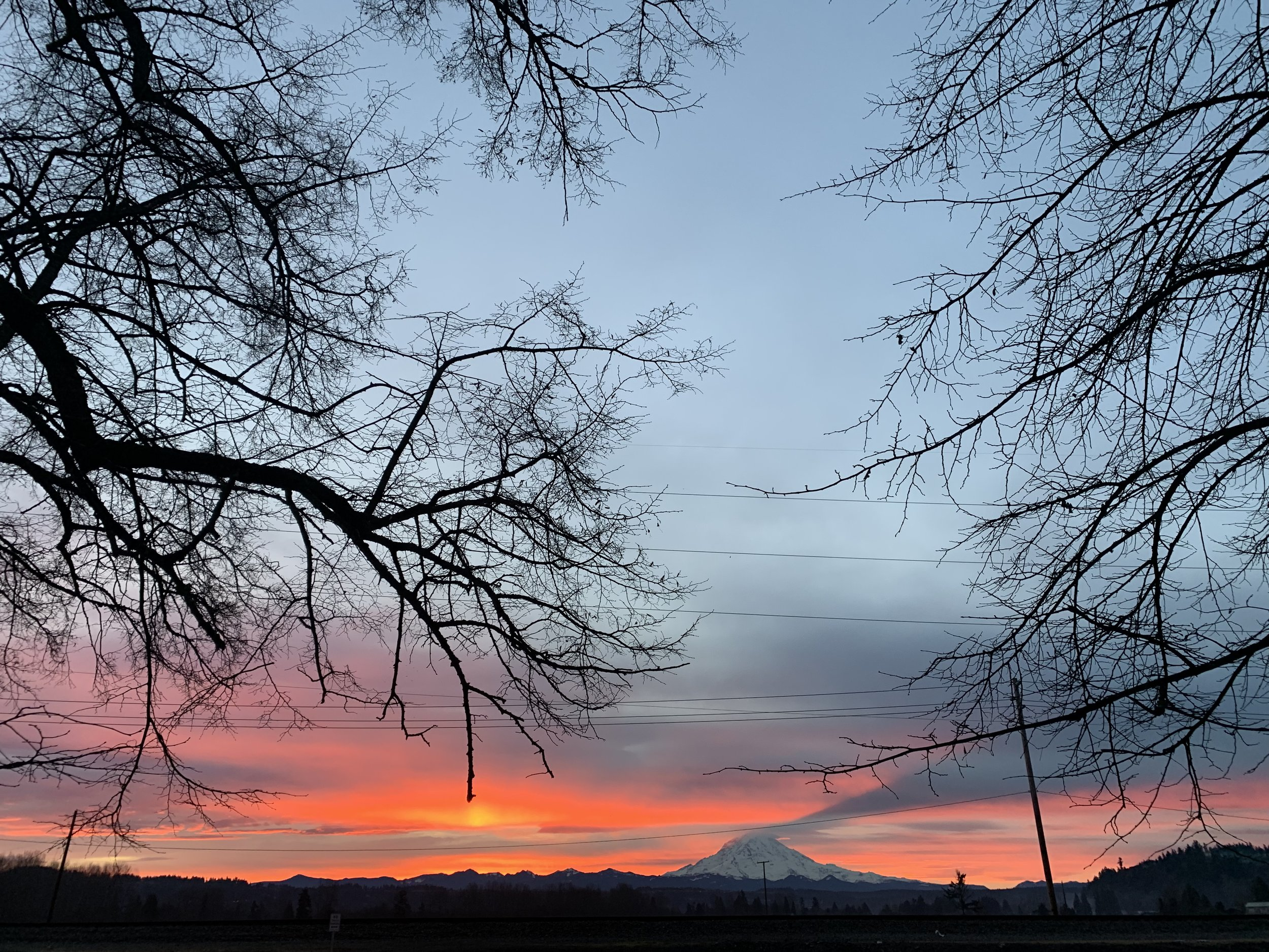 sunrise-january-the-mountain-rainer.JPG