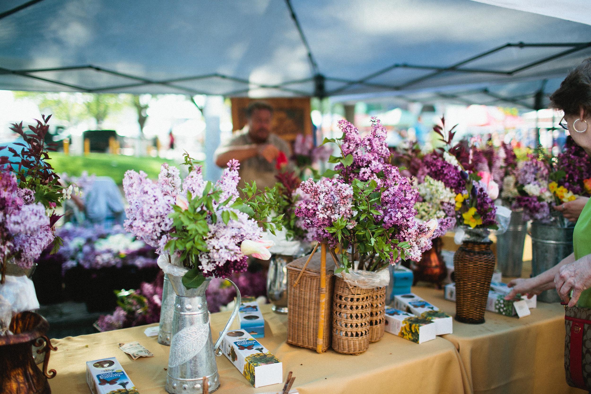 hyacinth flowers des moines farmers market